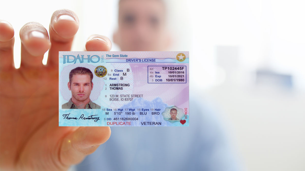 What Happens to My Driver's License After a DUI